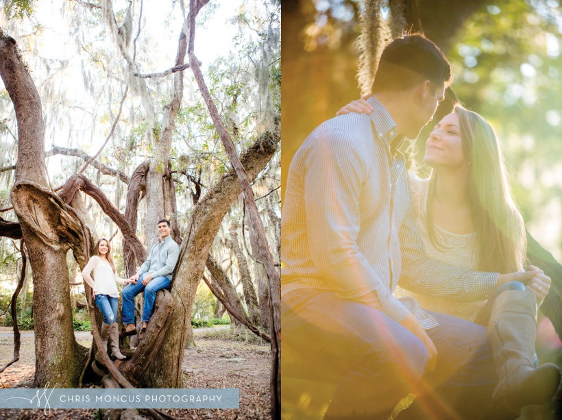 Couple in Tree with vines at engagement session