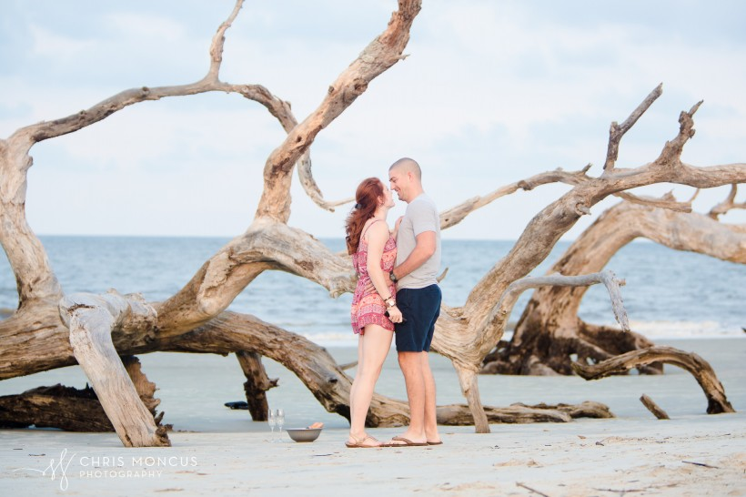 Driftwood Beach Proposal Jekyll Island 06