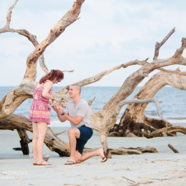 Cole Proposed to Kelsey on Jekyll Island Driftwood Beach!