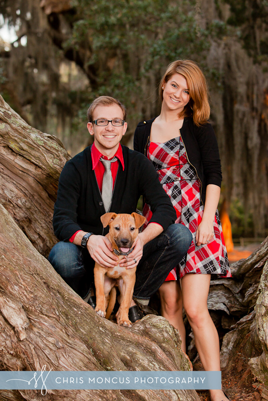 St Simons Island Christmas portraits with a puppy