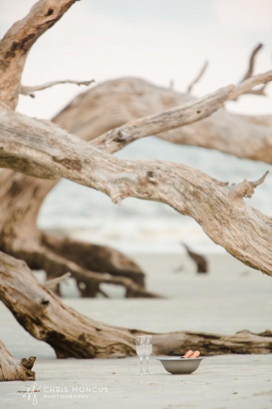 Driftwood Beach Proposal Jekyll Island 01