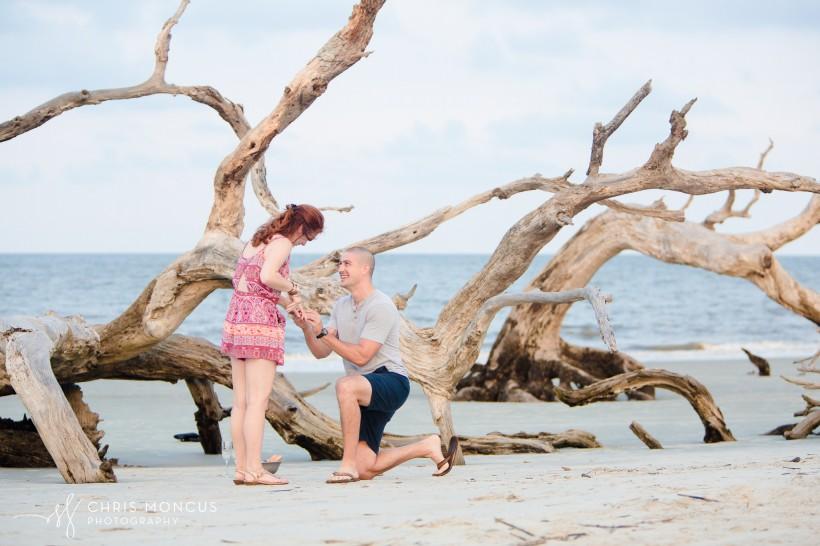 Driftwood Beach Proposal Jekyll Island 07