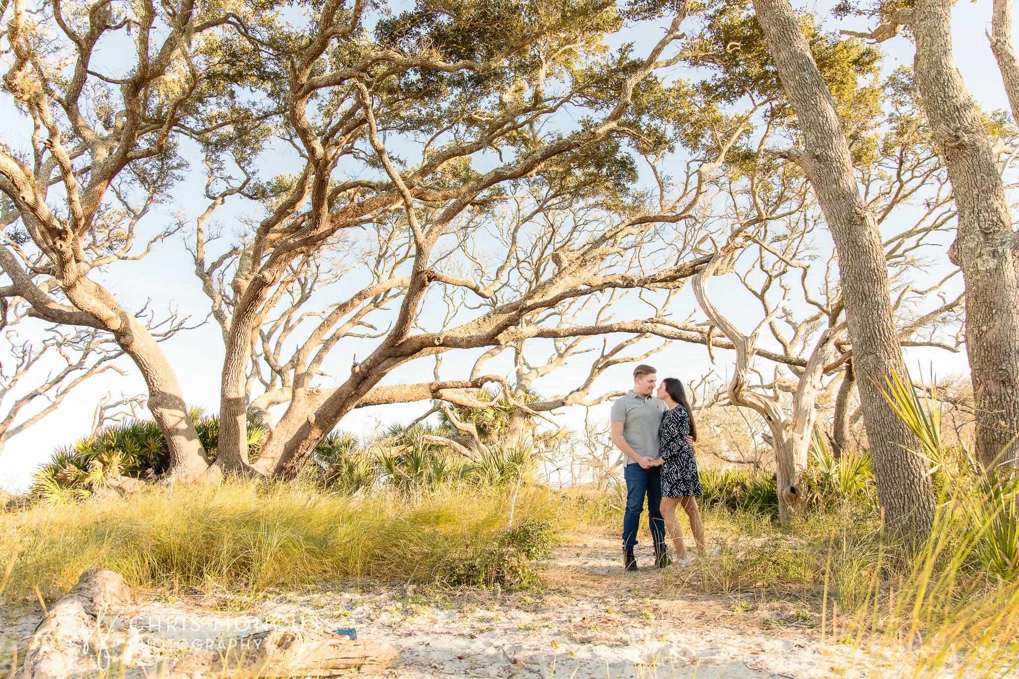 Oak Trees Jekyll Island